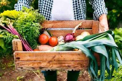 Guter Vorsatz: Regionale Anbieter / Bauern unterstützen